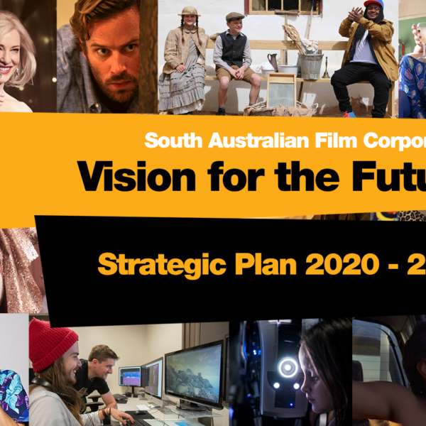 Vision for the Future: SAFC Strategic Plan 2020-2023