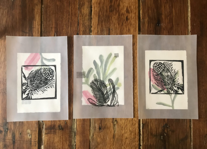 banksia flowers woodblock print, gouache and ink on paper