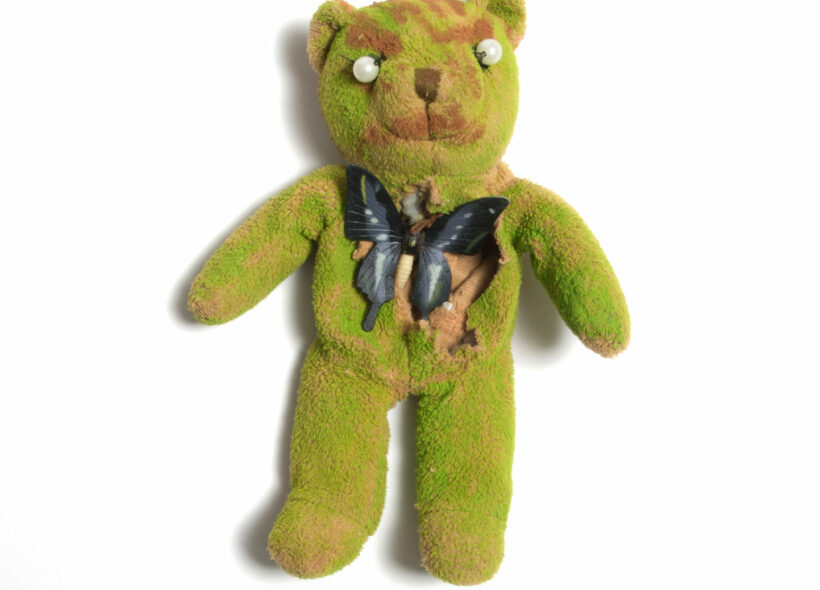 Abstract textile green plush bear with black butterfly